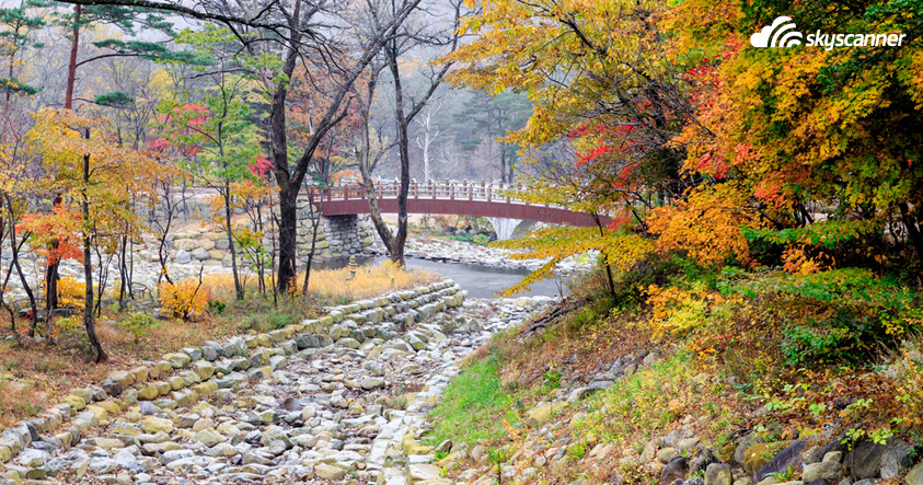 7 best places to go in South Korea during autumn